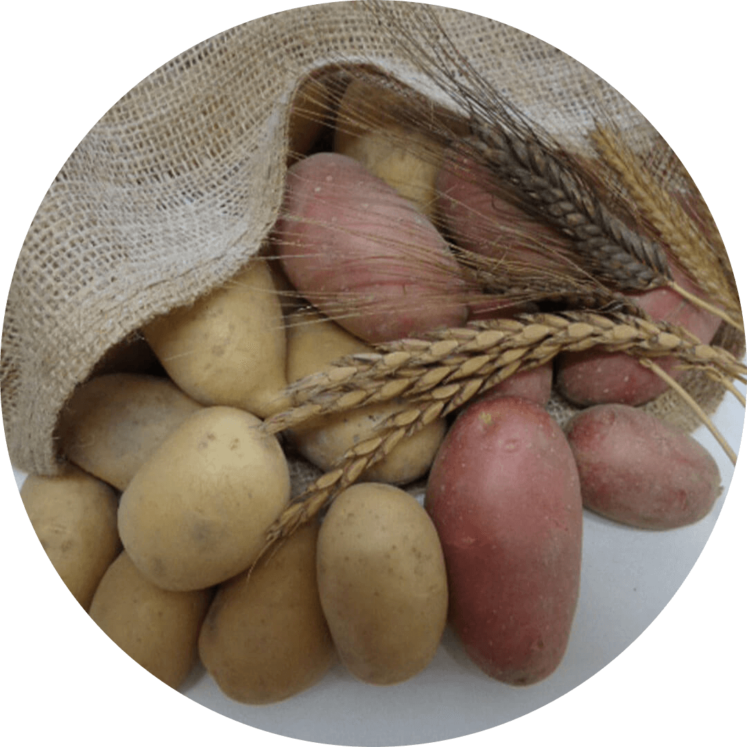 Bio Kartoffeln & Getreide